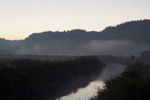 朝もやがかかる川